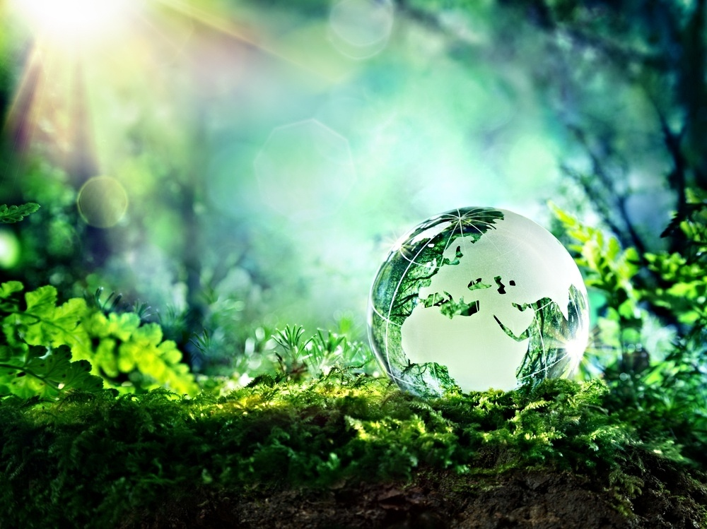 Online-Sociology-Degree-Course-Sustainability